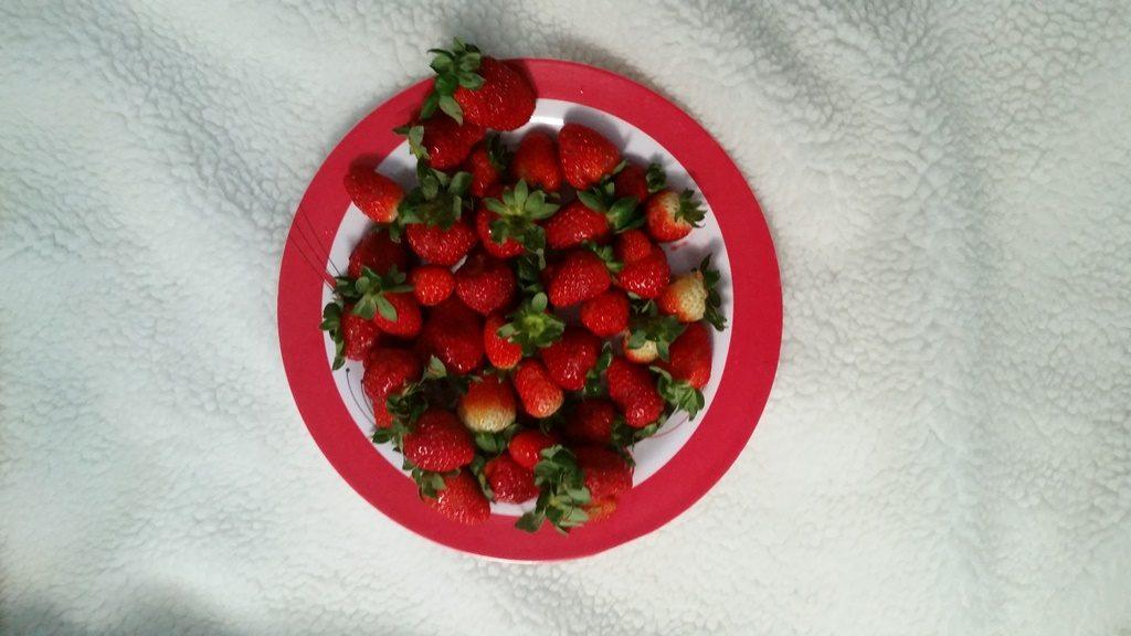 frutas-lary-di-lua-1