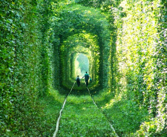 tunel do amor lary di lua (2)